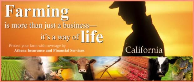 california-farm-624-265