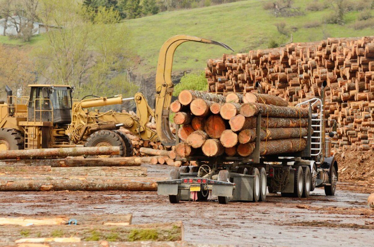 loggers-background-loader-logs-truck